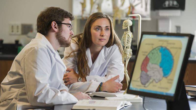 Neuroscience and Behavior | University of Notre Dame